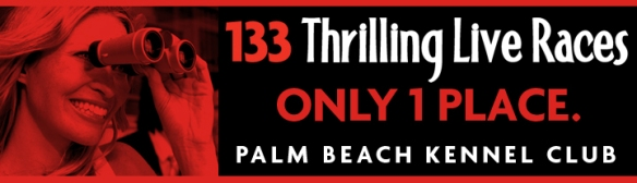 Palm Beach Kennel Club LED Billboard
